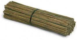Bambusrohr 150 cm (10er Pack) - 470151