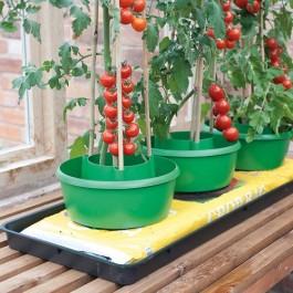 Garland Tomaten Pflanzringe - 3er Set G167