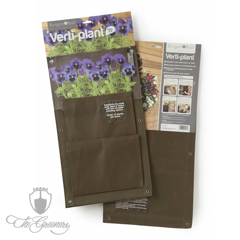 Burgon & Ball Verti Plant Kastanie - 2er Pack