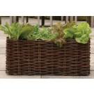 Burgon & Ball Weiden Salat Pflanzset - GYO/HOSPN