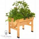 VegTrug Holz Hochbeet - Mini 75cm
